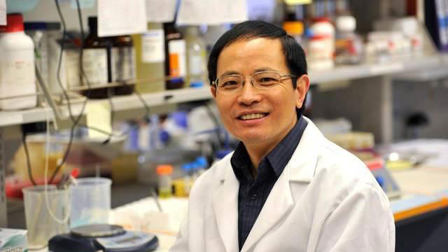 Professor Gong Chen, the Verne Willaman Chair of Life Sciences at Penn State