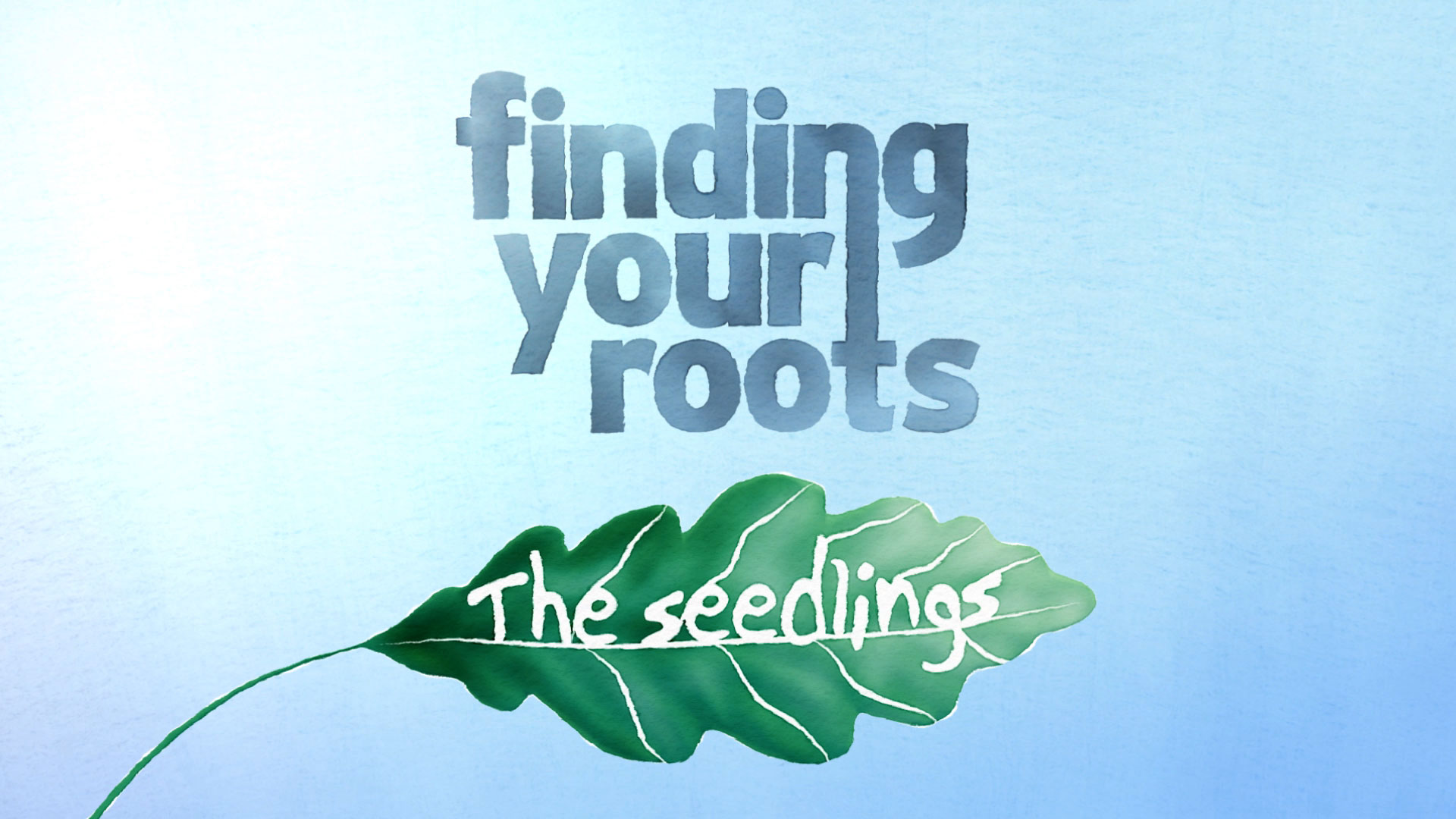 Finding Your Roots The Seedlings - Title Card