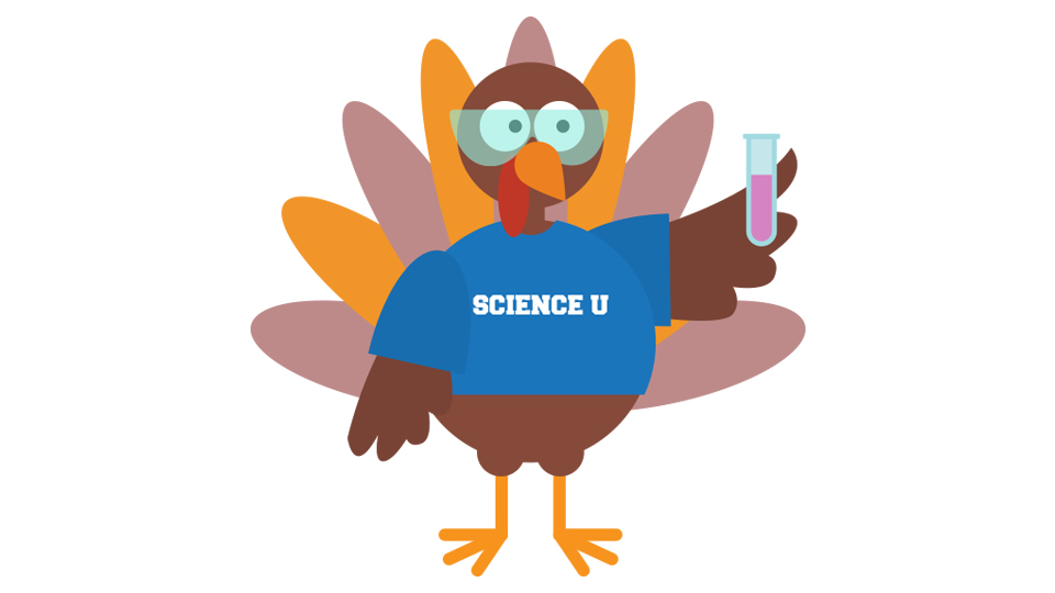 Science-U @Home Thanksgiving Challenge