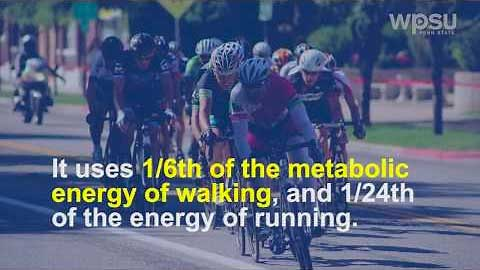 Bicycle Facts