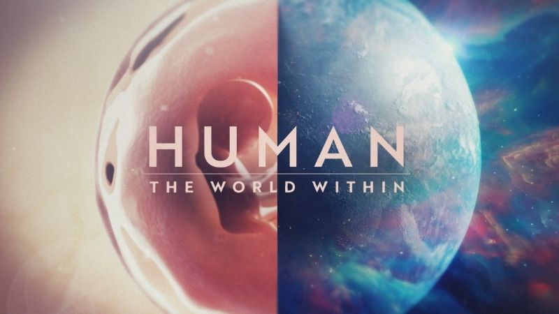 Human the World Within