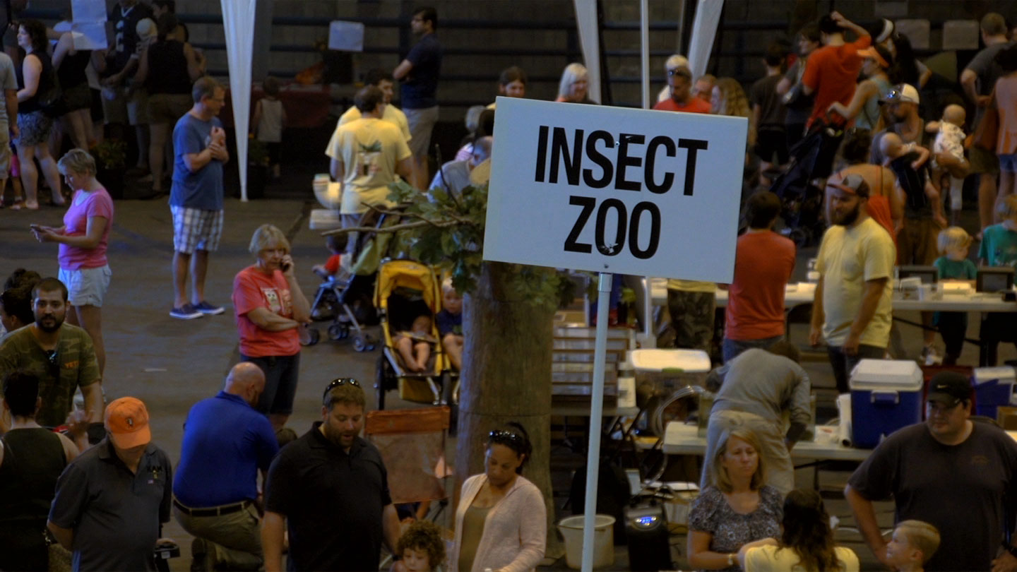 Group of people at an insect fair
