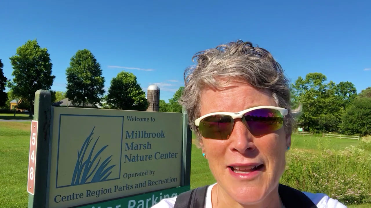 Carolyn at Millbrook Marsh