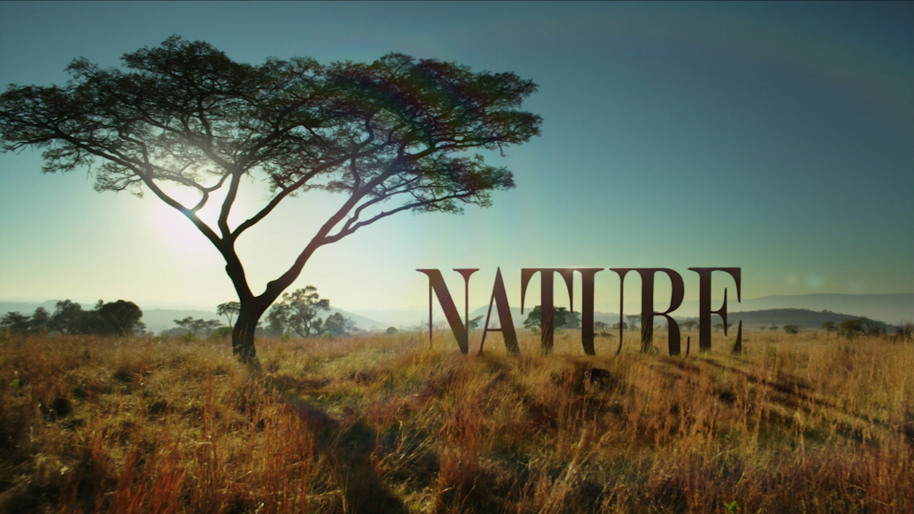 Nature title card