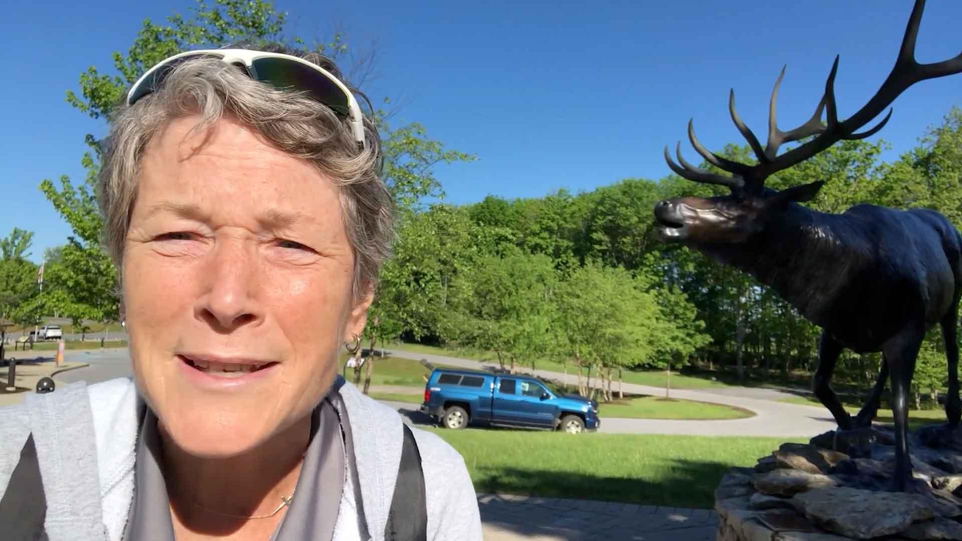Carolyn Elk Walk