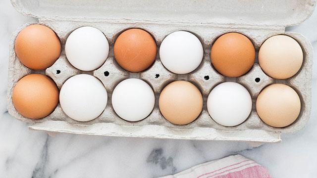 bouncing egg experiments